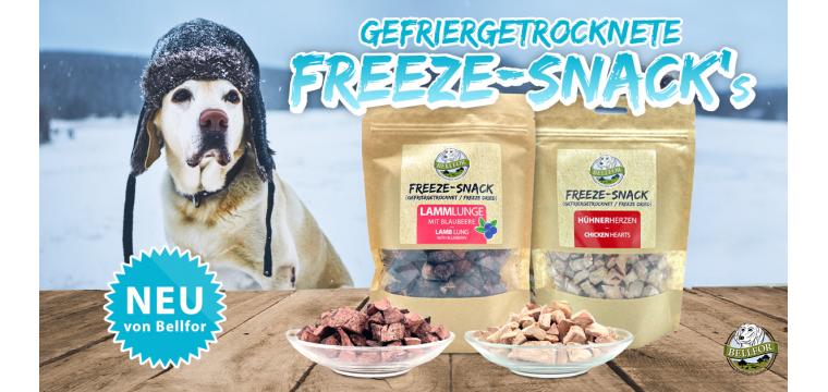 freeze-snacks_deu-760x360